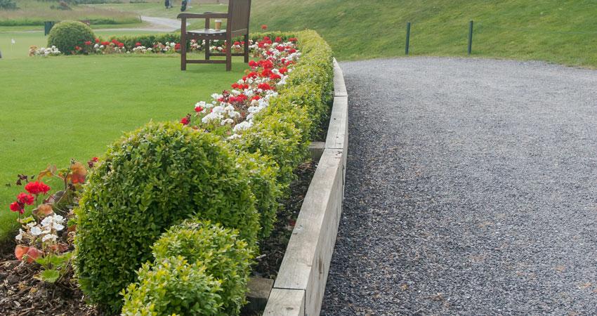 Planting at Castlemartyr Resort