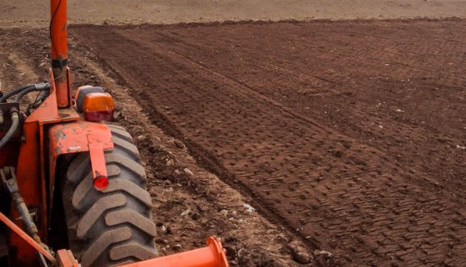 Site Preparation & Lawn Seeding