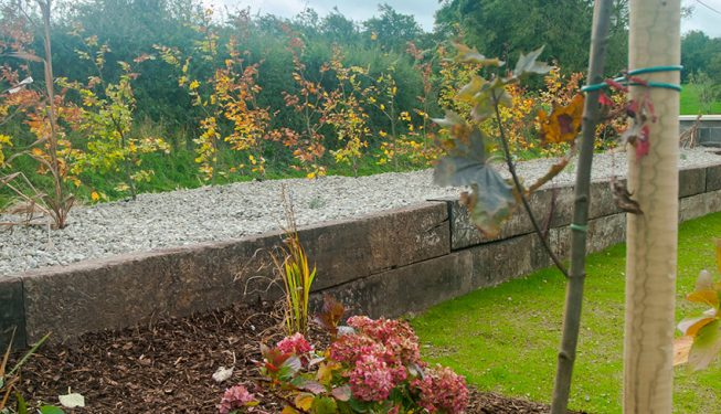 Raised Beech Planting in Stone Bed with Old Railway Sleepers